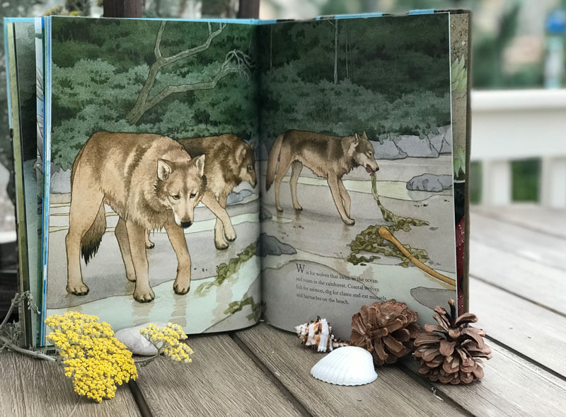 children book about nature alphabet