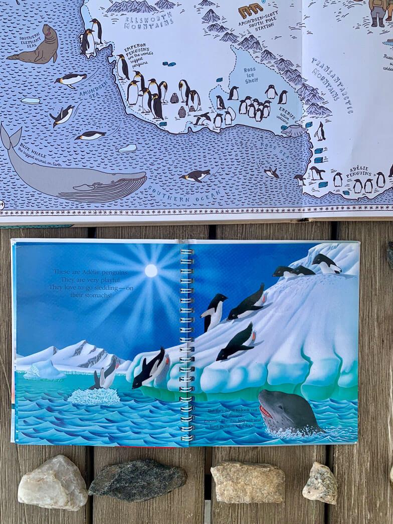 children books about penguins