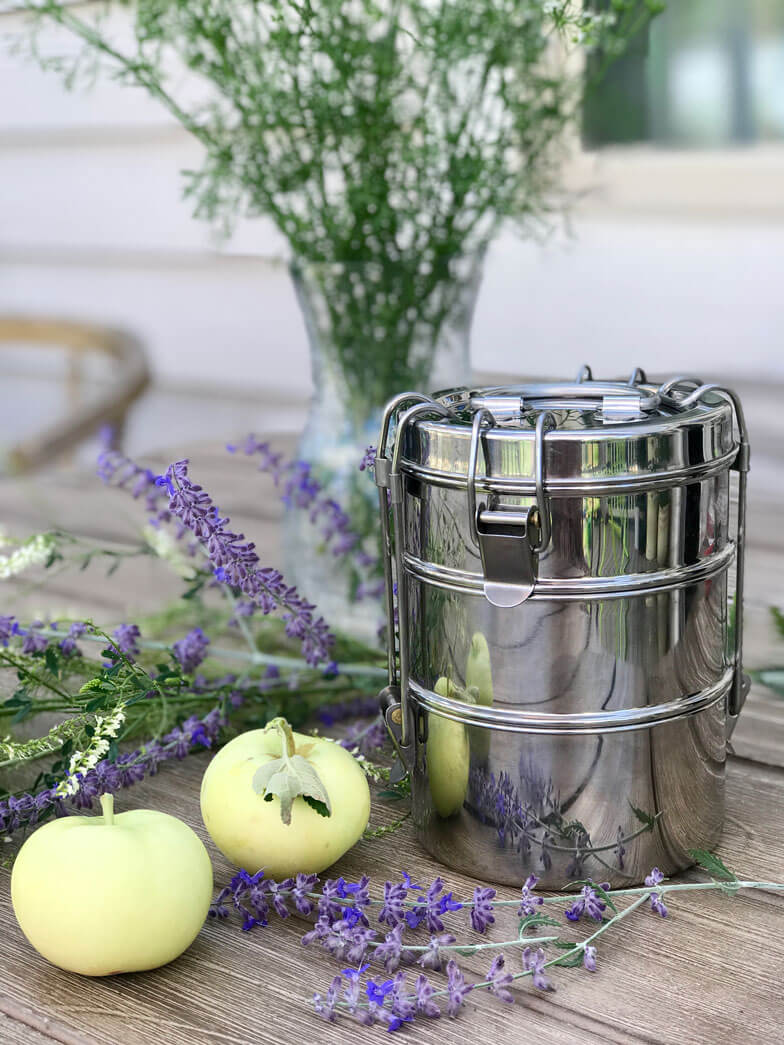 stainless steal to-go ware container non-toxic food container